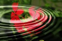 Trouver le calme en soi et augmenter l'estime de soi avec la sophrologie