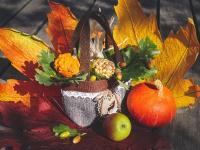 C'est l'automne, saison qui invite à ralentir et à lâcher-prise
