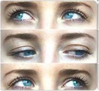 Mettre en relation le corps, l'esprit et la conscience par l'utilisation du champ visuel